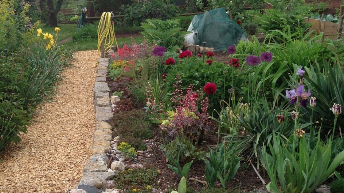 Nachhaltiges Familien Leben - Biogarten