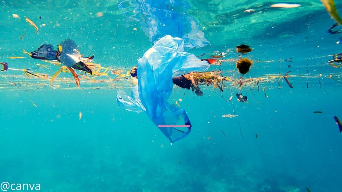 Plastiktüte und Plastikvermüllung der Ozeane