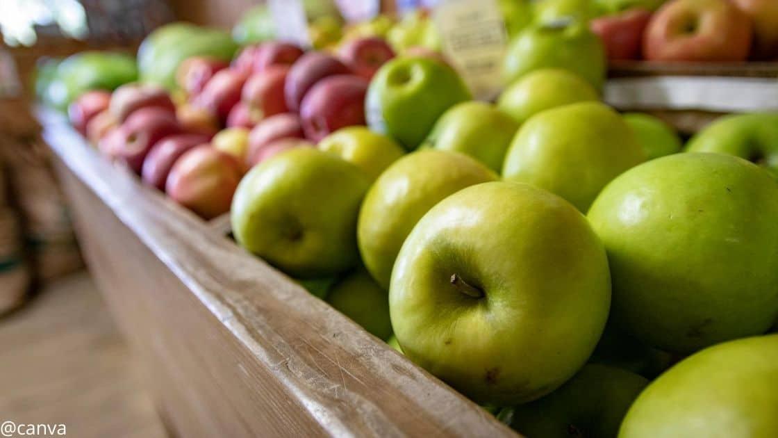 Äpfel nach der Ernte