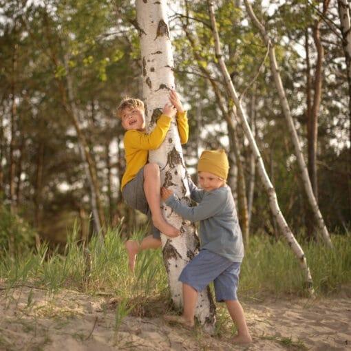 Bio Sweater für Kinder aus Biobaumwolle taubenblau und senfgelb